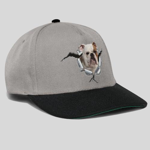 Englische Bulldogge *Metall-Loch* - Snapback Cap