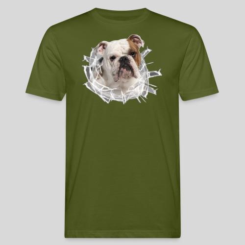 Englische Bulldogge *Glas-Loch* - Männer Bio-T-Shirt