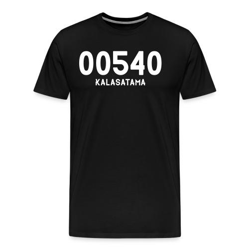 00540 KALASATAMA - Miesten premium t-paita