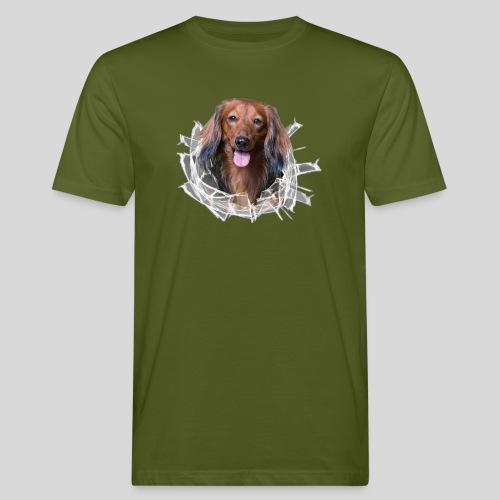 Langhaar Dackel im *Glas-Loch* - Männer Bio-T-Shirt