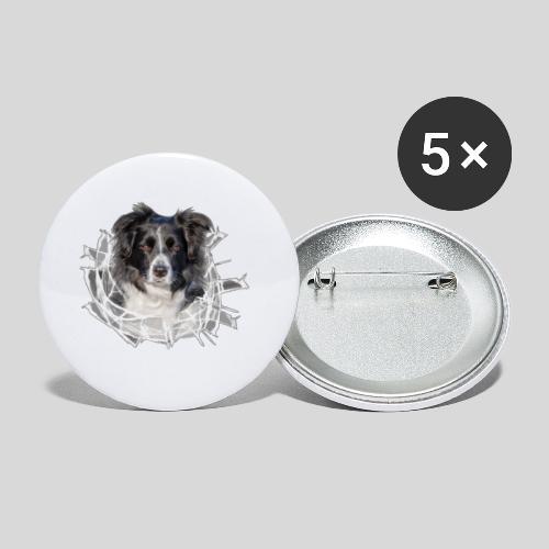 Border Collie im *Glas-Loch* - Buttons klein 25 mm (5er Pack)