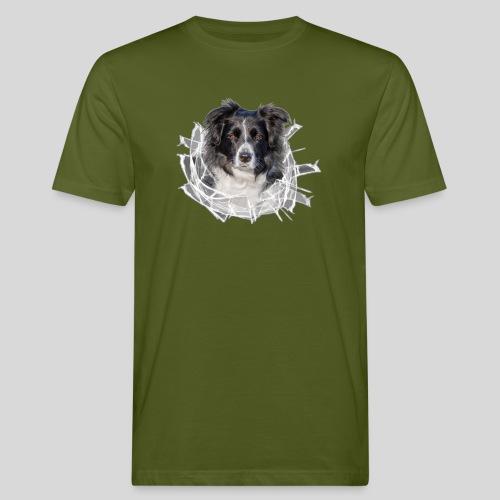 Border Collie im *Glas-Loch* - Männer Bio-T-Shirt