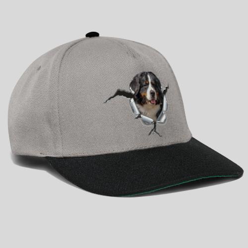 Berner Sennenhund im *Metall-Loch* - Snapback Cap