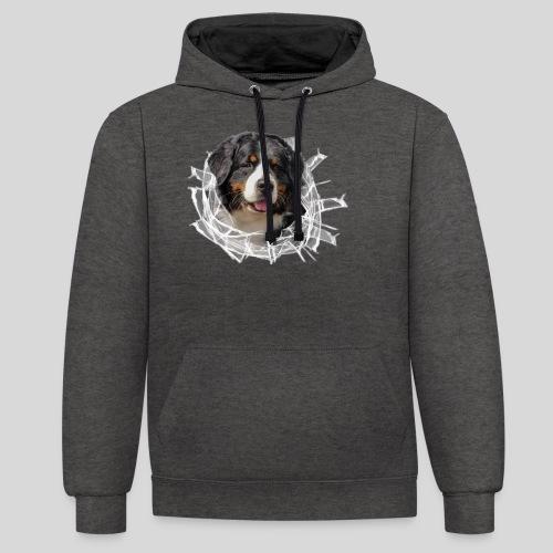 Berner Sennen Hund im *Glas-Loch* - Kontrast-Hoodie