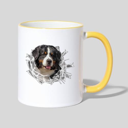 Berner Sennen Hund im *Glas-Loch* - Tasse zweifarbig