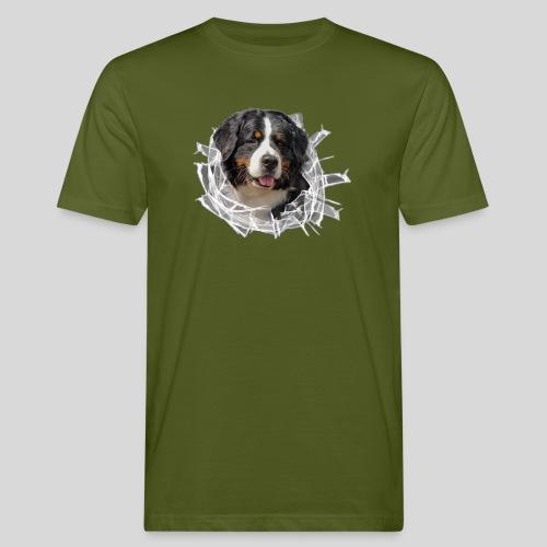 Berner Sennen Hund im *Glas-Loch* - Männer Bio-T-Shirt
