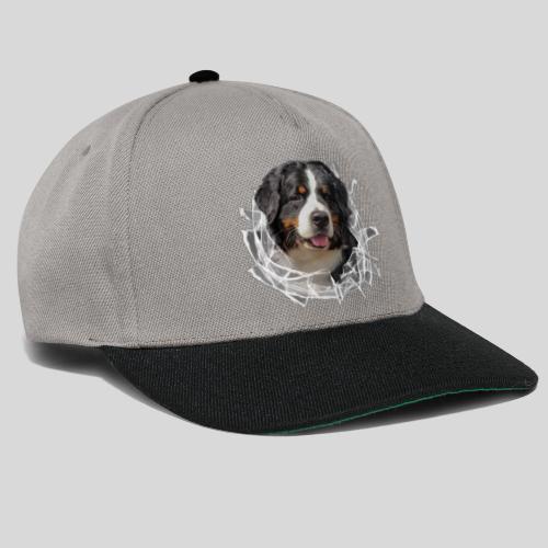Berner Sennen Hund im *Glas-Loch* - Snapback Cap