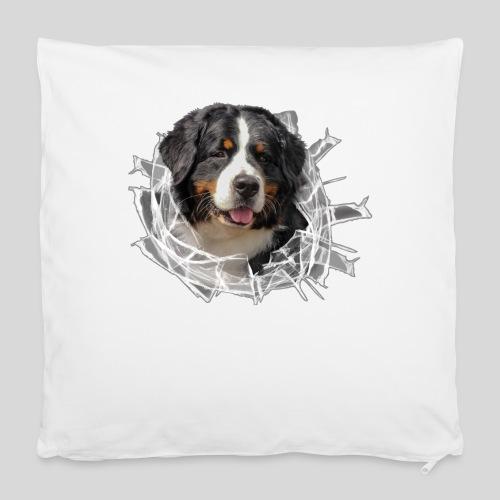 Berner Sennen Hund im *Glas-Loch* - Kissenbezug 40 x 40 cm