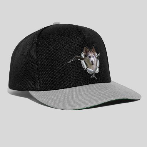 Husky im *Metall-Loch* - Snapback Cap