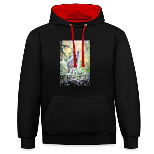 La Tanière des Chiens-Loups - Sweat-shirt contraste