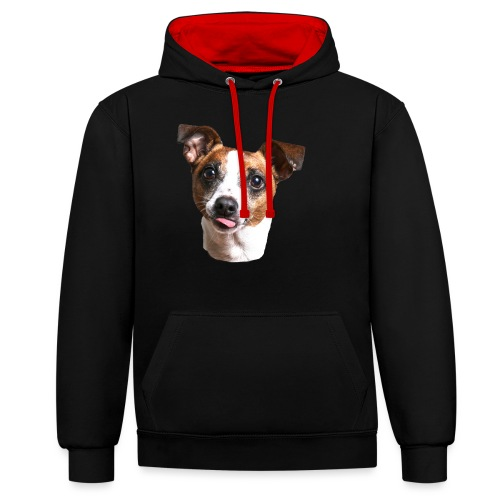 Jack Russell - Contrast Colour Hoodie