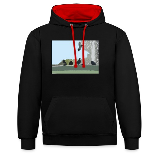 Chillin' pigeons - Contrast hoodie