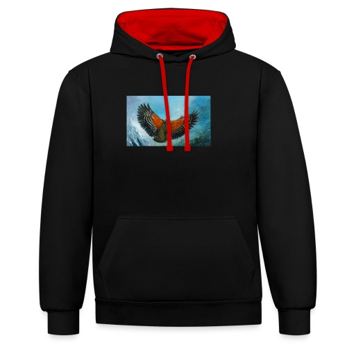 123supersurge - Contrast Colour Hoodie