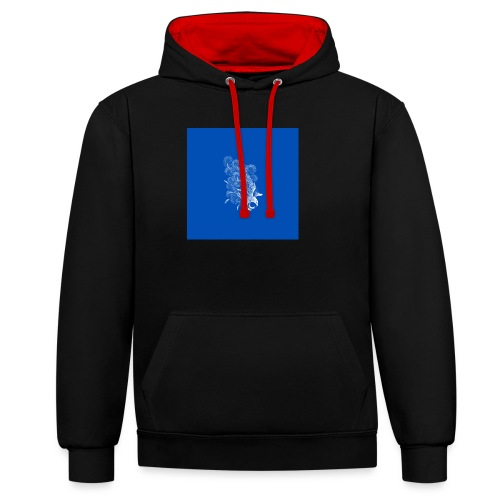 Windy Wings Blue - Contrast Colour Hoodie