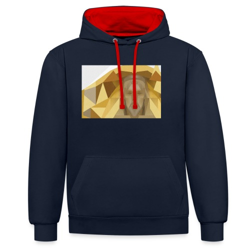 In awe of Jesus - Contrast Colour Hoodie