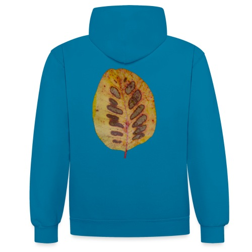 Feuille d'automne - Sweat-shirt contraste