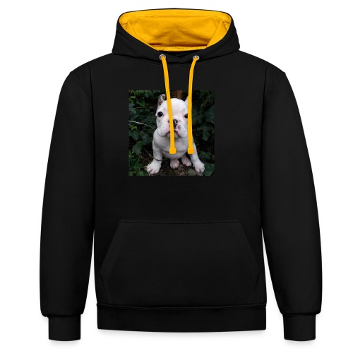 Billy Puppy 2 - Contrast hoodie