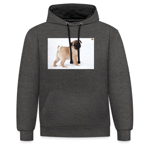 walker family pug merch - Contrast Colour Hoodie
