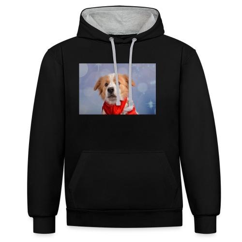 DSC_2040-jpg - Contrast hoodie