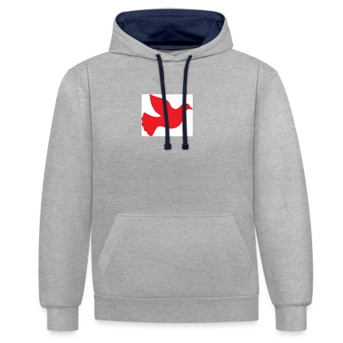 Untitled - Contrast Colour Hoodie