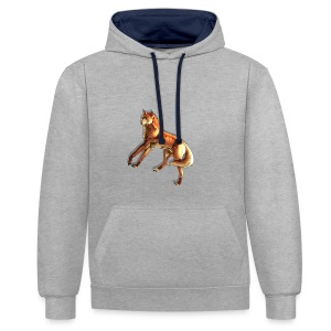 Fox of the night - Contrast Colour Hoodie