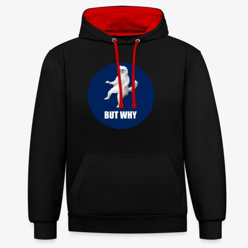 BUTWHY - Contrast Colour Hoodie