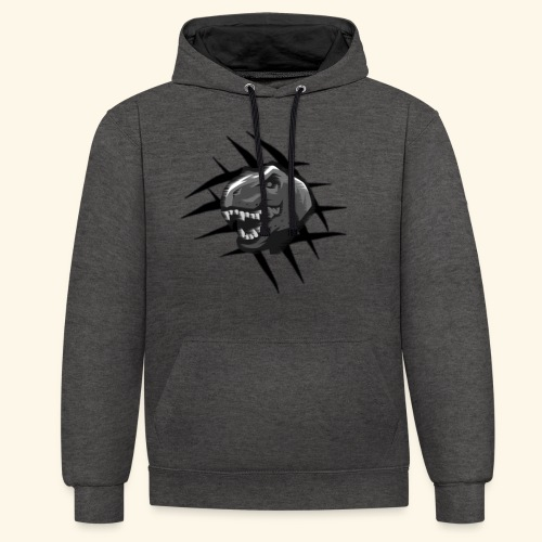 Nyghaa Official Logo - Contrast Colour Hoodie