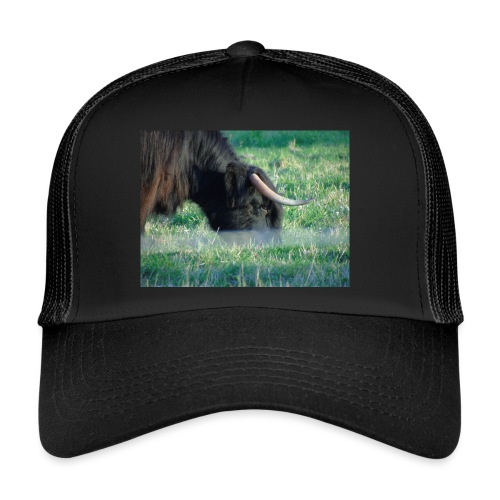 A highland cow - Trucker Cap