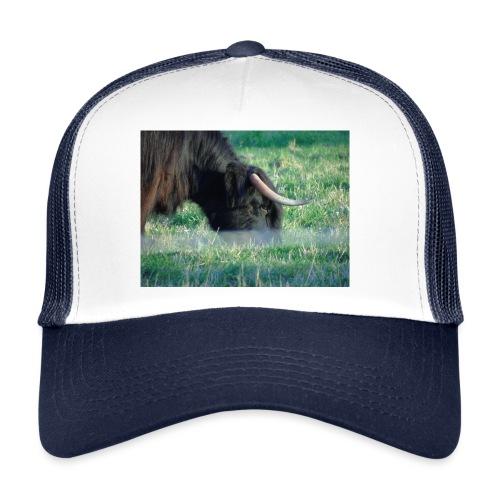 A highland cow - Trucker Cap