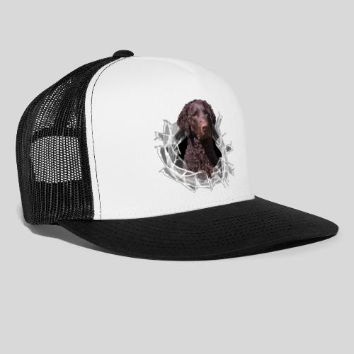 Curly Coated Liver im Glasloch - Trucker Cap