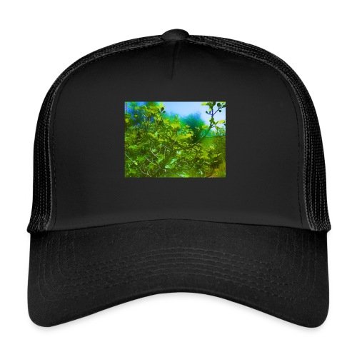 paysage_filtre - Trucker Cap