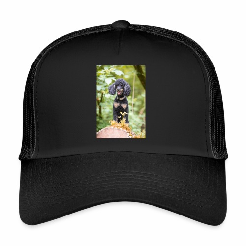 TOM 3434 - Trucker Cap