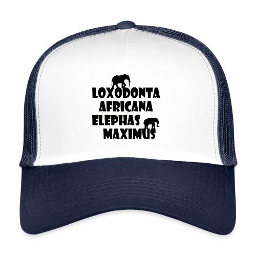 LOXODONTA AFRICANA - ELEPHAS MAXIMUS - Trucker Cap