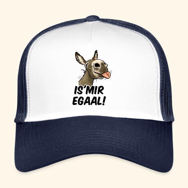 "Esel ""Is'Mir Egaal!"" (schwartzer text)"