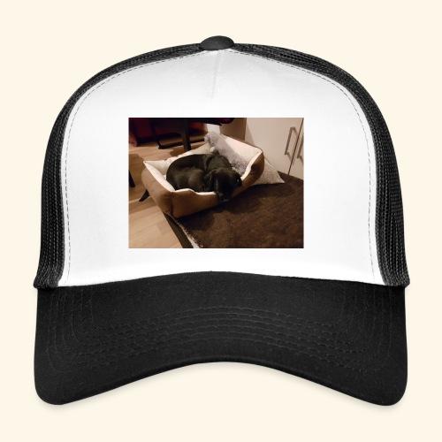 Hund im Hundekörbchen - Trucker Cap