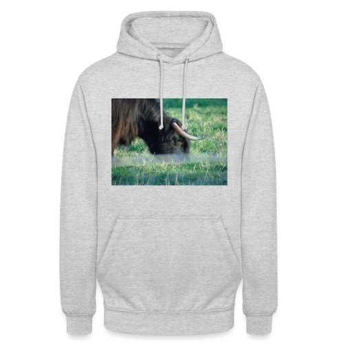 A highland cow - Unisex Hoodie