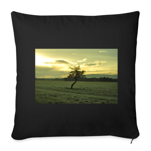 _DSC2060 - Sofa pillow cover 44 x 44 cm