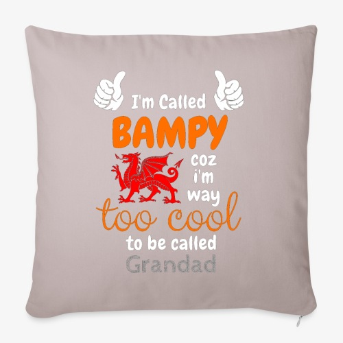 I'm Called BAMPY - Cool Range - Sofa pillowcase 17,3'' x 17,3'' (45 x 45 cm)