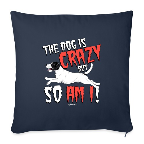 parsoncrazy3 - Sofa pillowcase 17,3'' x 17,3'' (45 x 45 cm)