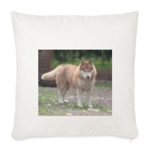 MY DOG - Sohvatyynyn päällinen 44 x 44 cm