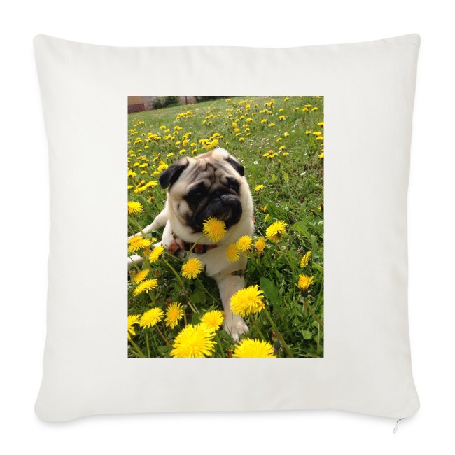 Mops mit Butterblume