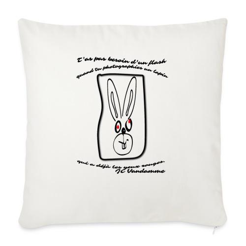 citation de Vandamme - Housse de coussin décorative 45x 45cm