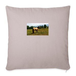 IMG_20150903_140848-jpg - Sofa pillow cover 44 x 44 cm