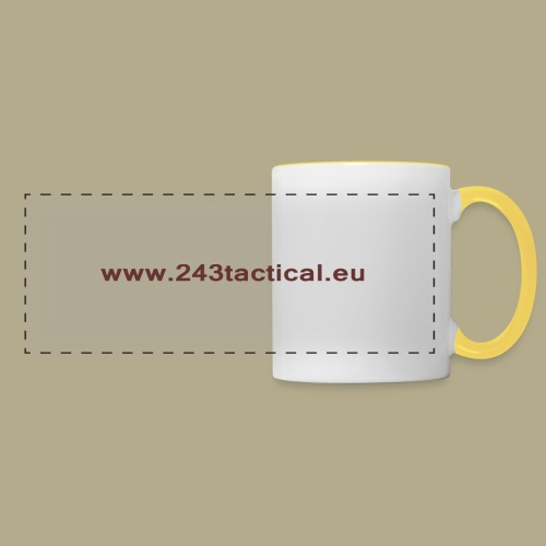 .243 Tactical Website - Panoramamok