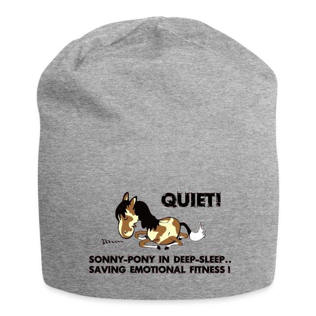 QUIET Sonny Pony in deep sleep