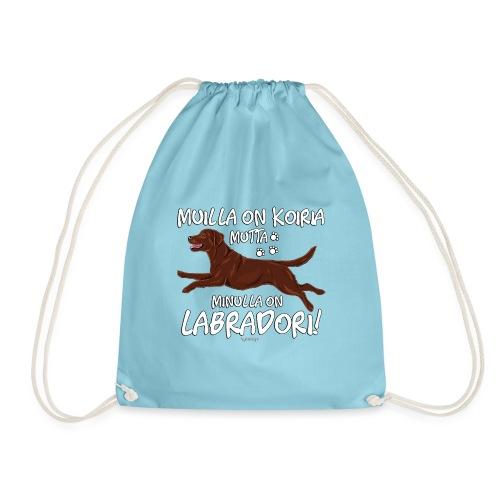 Labradori Koiria 2 - Jumppakassi