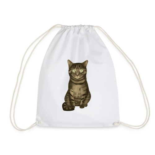 Domestic Brown Tabby Cat - Gymtas