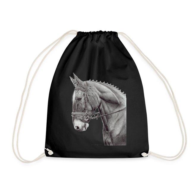 oldenburg horse