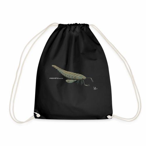 Pterygotus - Drawstring Bag