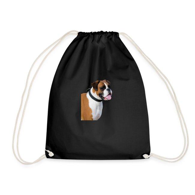 boxer hund png isolated boxer dog animal portrait
